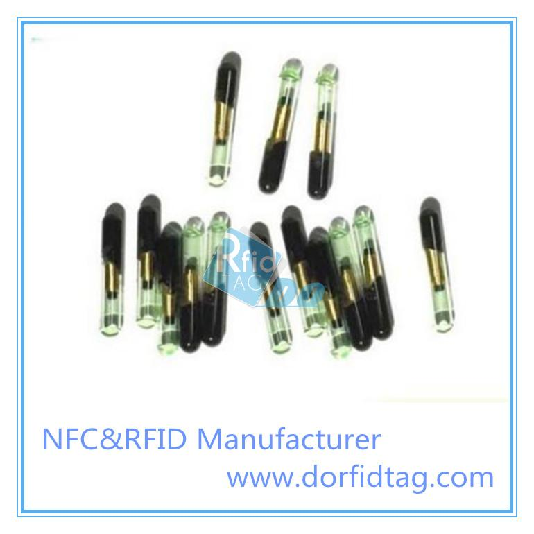 RFID Glass tag for animal managment